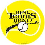 Car Sign Tennis Ball Magnets